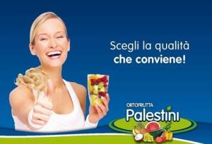palestini-ascoli-piceno-distribuzione-pubblicitaria-volantinaggio